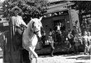 Dečji karneval u Mladenovcu 1956.